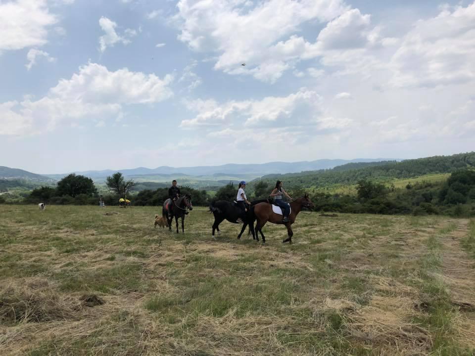 08.07.2018 – Конна езда
