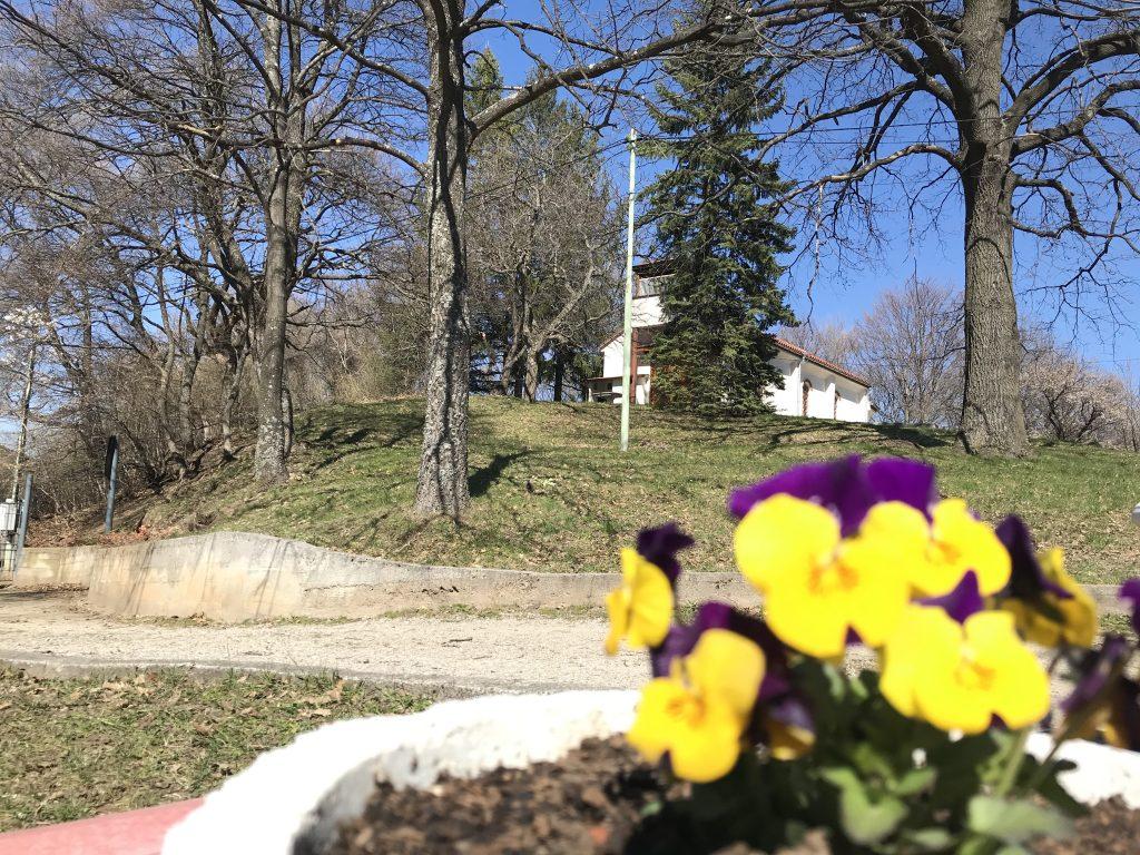 09.04.2020 Пролетно вдъхновение от GREEN PARK SOFIA